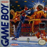 Best of the Best: Championship Karate (Game Boy)