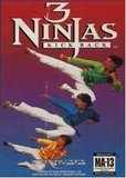 3 Ninjas Kick Back (Genesis)