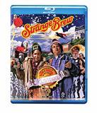 Strange Brew (Blu-ray)