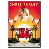Beverly Hills Ninja (DVD)