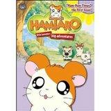 Hamtaro Vol. 6: Ham-Ham Times: The First Issue (DVD)