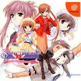 Sister Princess -- Premium Edition (Dreamcast)