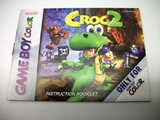Croc 2 -- Manual Only (Game Boy Color)
