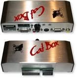 Cat Box (Jaguar)