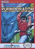 Flying Dragon: The Secret Scroll (Nintendo Entertainment System)