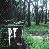P.T. (PlayStation 4)